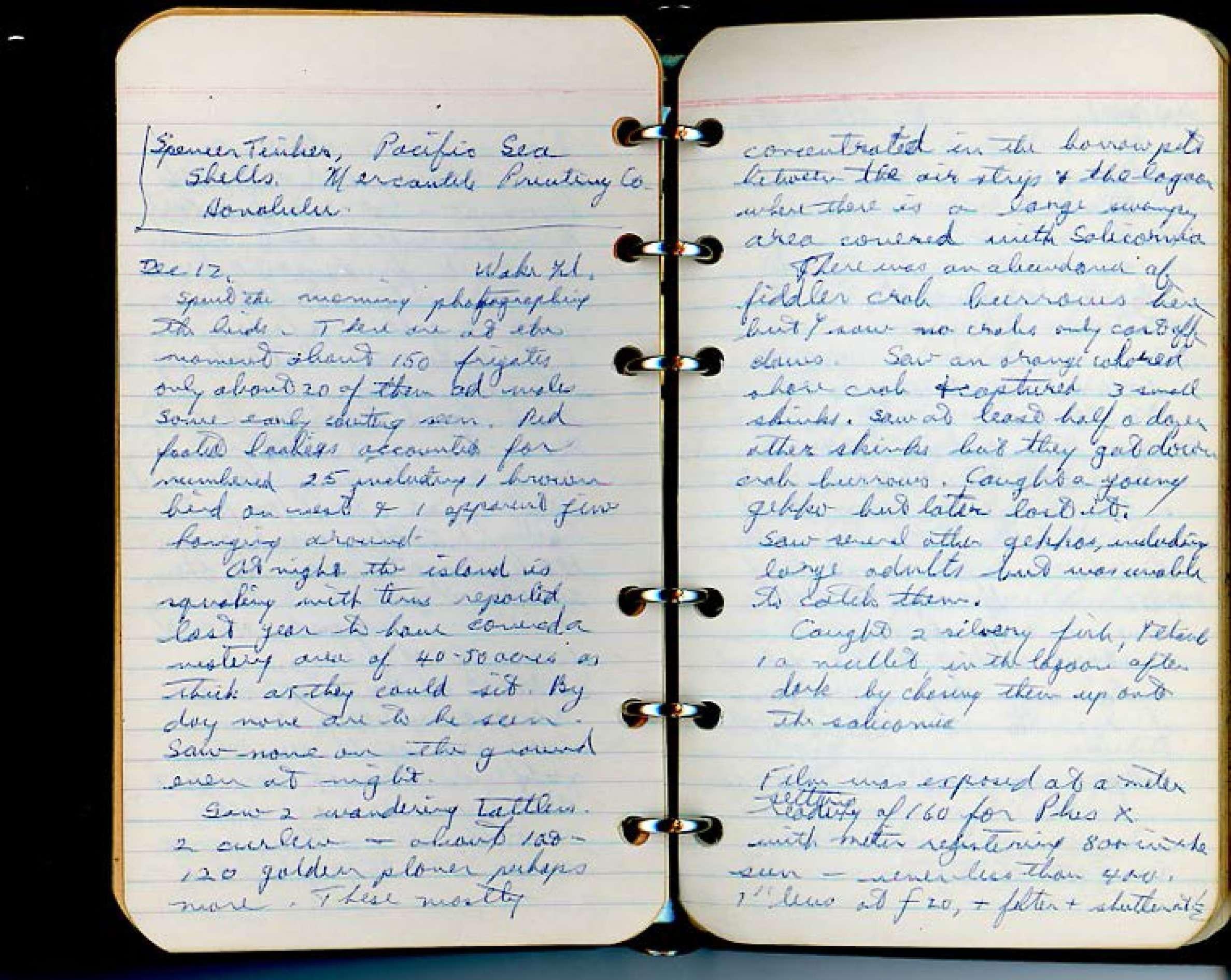 Ian McTaggart Cowan travel journal (1957-1958) : Tokyo, Japan ...